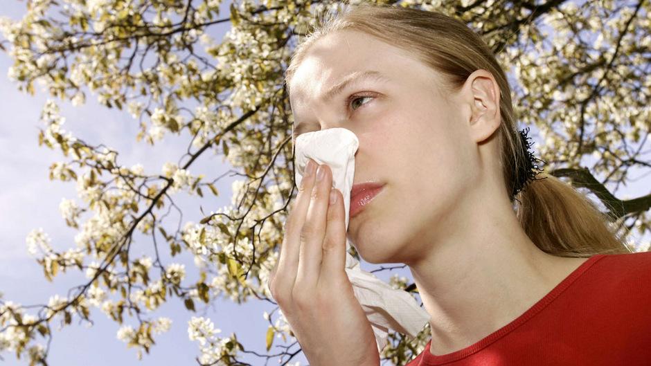 Die Pollen fliegen wieder durch die Luft.