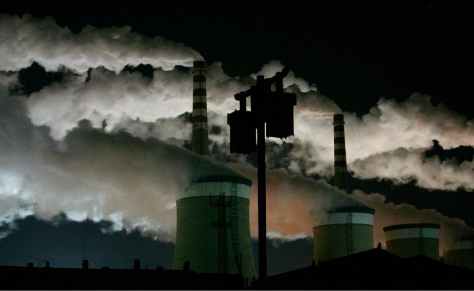 Umweltverschmutzung sehen die Forscher als eine der Hauptursachen für das beschleunigte Aussterben.