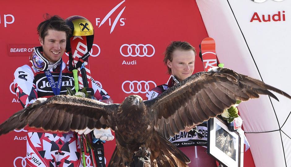 Für Marcel Hirscher spannte der Adler bei der Siegerehrung in Beaver Creek gleich zwei Mal die Flügel aus.