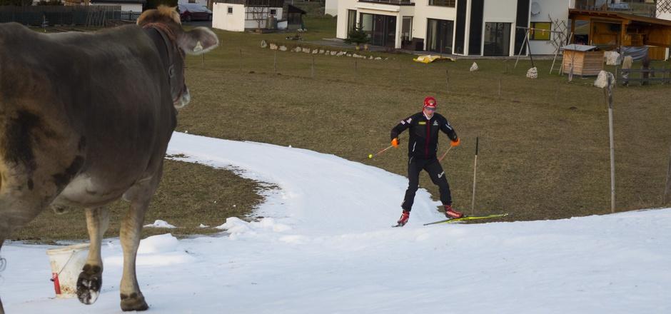 """Gestern hatte eine Kuh ÖSV-Star Dominik Landertinger noch ganz für sich alleine. Beim Biathlon-Heim-Weltcup in Hochfilzen werden am Wochenende bis zu 30.000 Fans erwartet. """"Es gibt nichts Schöneres, als vor eigenem Publikum zu laufen"""", sagte der Tiroler."""
