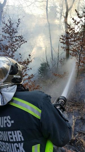 Die Feuerwehr konnte die Flammen rasch unter Kontrolle bringen.