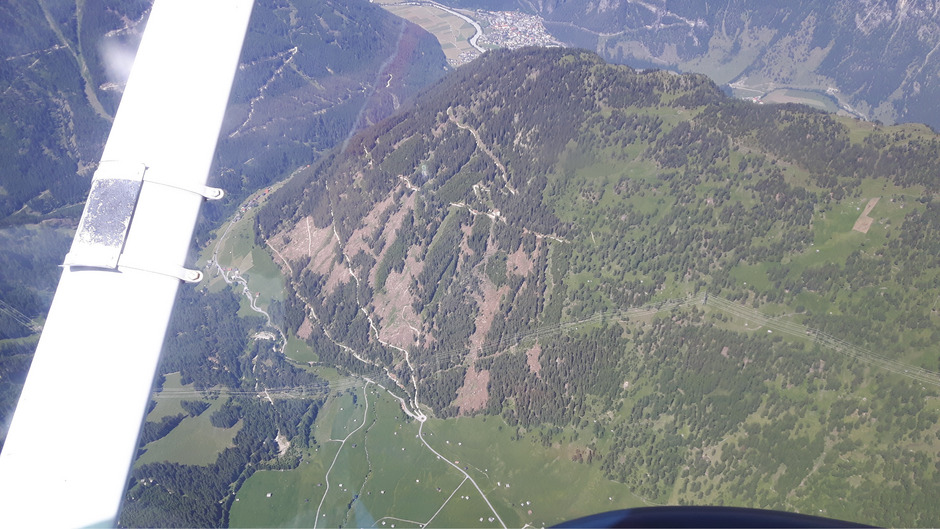 Ein Sturm legte im Greiter Bannwald letztes Jahr 20 Prozent der Bäume um.