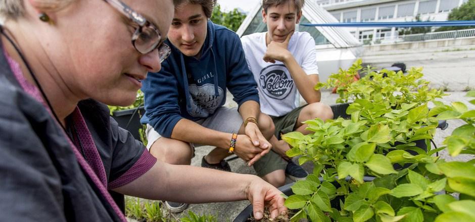 Gartenexpertin Andrea Heistinger zeigt Manuel und Moritz, worauf beim Urban Gardening zu achten ist