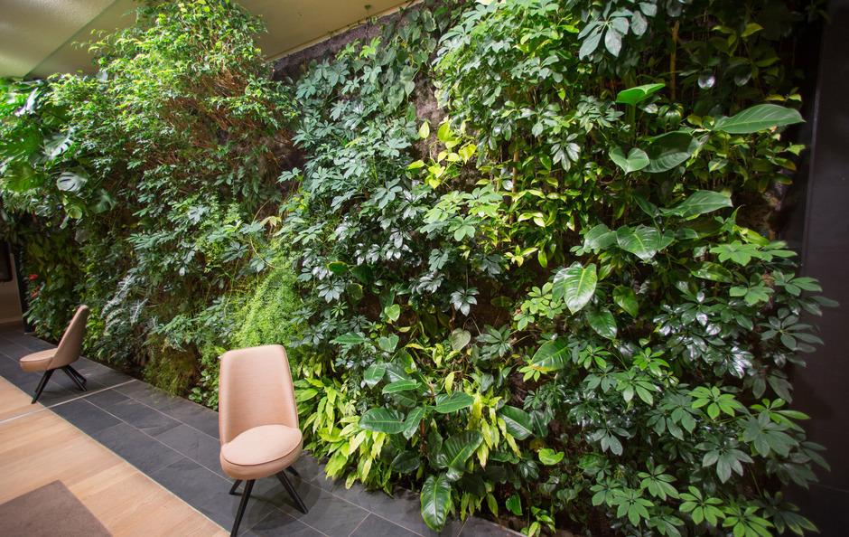 Ich glaub, ich steh im Wald: Grüne Wände halten auch in Gebäuden Einzug.