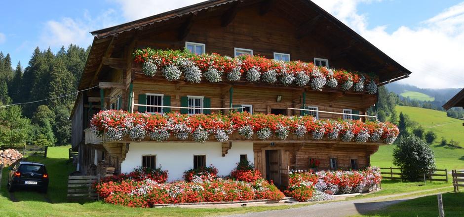 Wer durch Kirchberg fährt, dem fällt der Kalshof mit seiner üppigen Blumenpracht auf. Um die Pflanzen kümmert sich Barbara Achrainer.