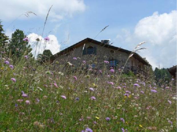 Verstecktes Kleinod inmitten satten Almwiesen: die Isi-Hütte.