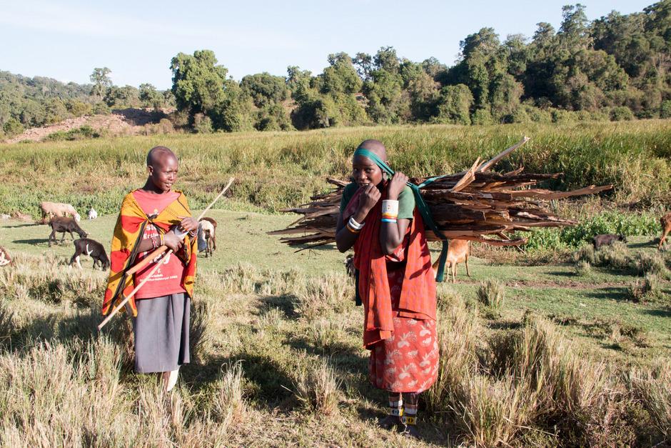 In Kenia sind nahezu drei von vier arbeitenden Menschen im Landwirtschaftssektor tätig und produzieren etwa ein Drittel des Bruttoinlandsprodukts.
