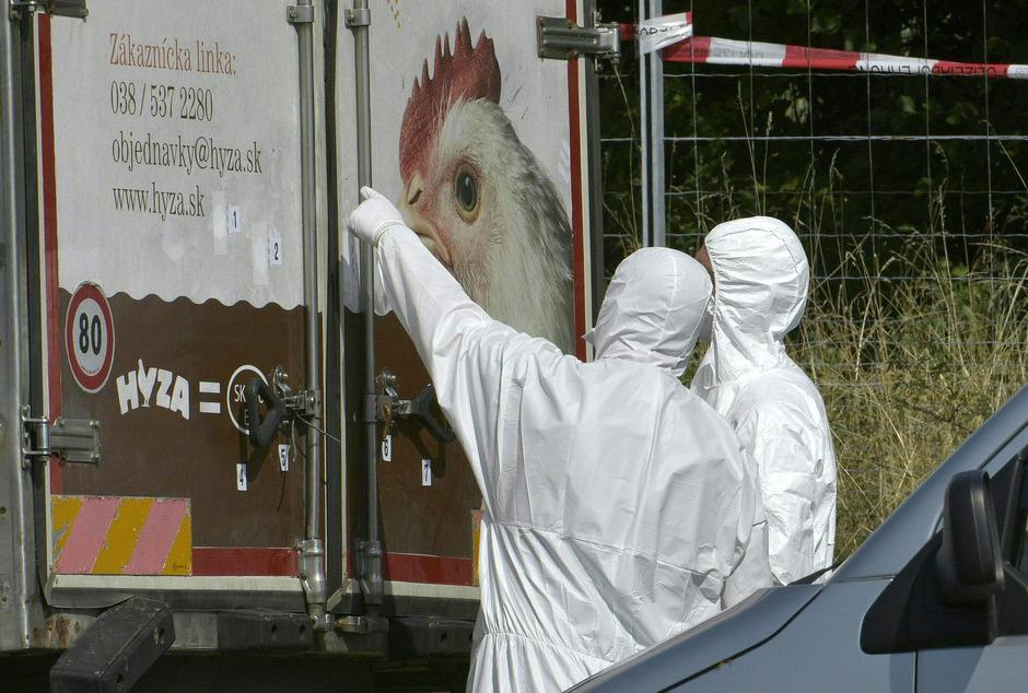 Ermittler der Polizei öffneten den abgestellten Lkw und fanden 71 Leichen.