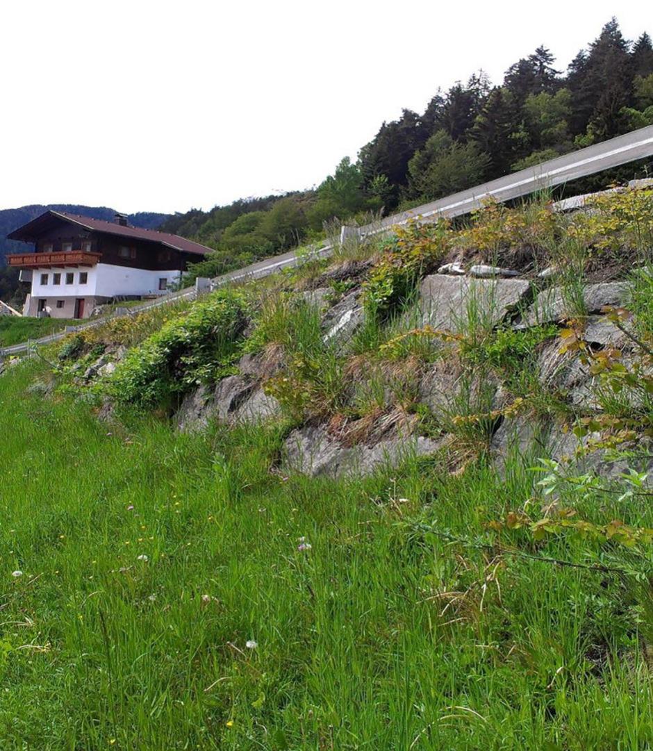 Die eingesparten Mittel werden für Sanierungen in ganz Osttirol verwendet: im Bild eine Mauer auf der Kalser Landesstraße in Oberpeischlach vor den Maßnahmen und nach der Realisierung (unten).