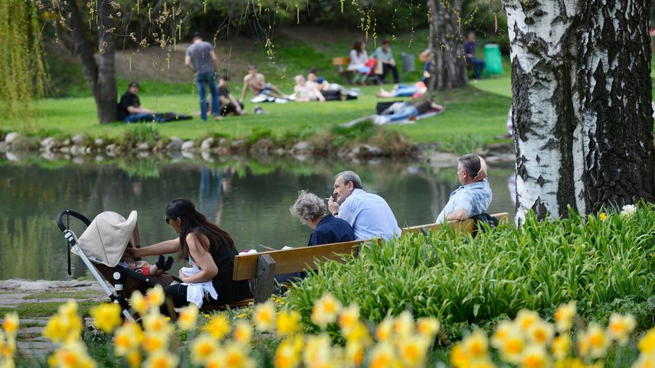 Die bereits bestehenden Alkoholverbotszonen in der Landeshauptstadt könnten in Bälde auf den Rapoldipark ausgedehnt werden.