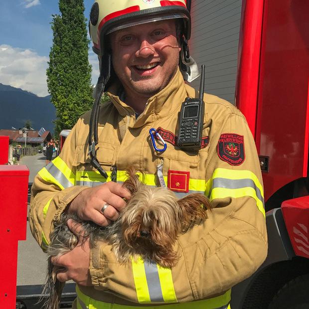 Die Feuerwehr kümmerte sich liebevoll um den aus der Wohnung geretteten Hund.
