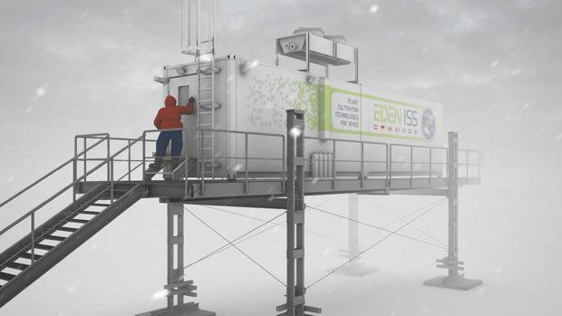Mit dem Projekt EDEN-ISS geht solch ein Modell-Gewächshaus der Zukunft Ende 2017 für ein Jahr unter antarktischen Extrembedingungen in die Langzeiterprobung.