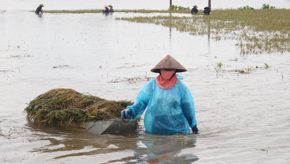 Nach dem schweren tropensturm stehen Teile Vietnams unter Wasser.