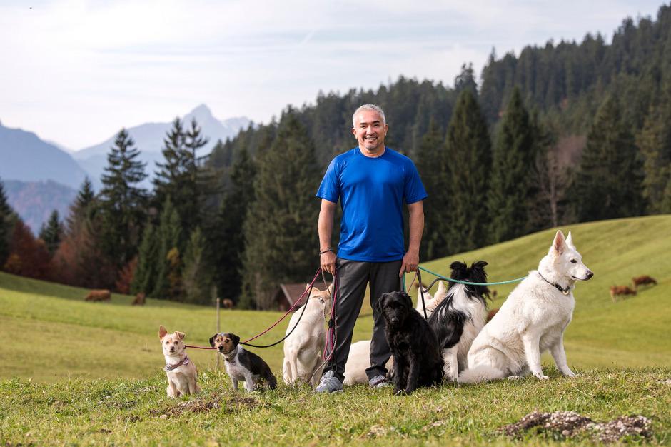 "Am 8. April wird Hundeflüsterer Cesar Millan im Rahmen seiner ""Once upon a Dog-Tour"" in Innsbruck auftreten."