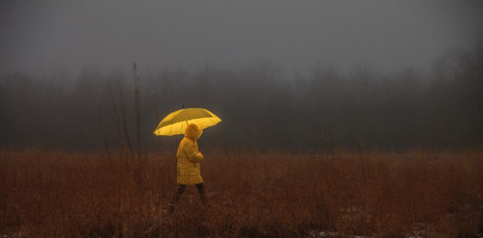 Allein durch die Natur zu gehen, tut der Seele gut und verhindert Einsamkeit.