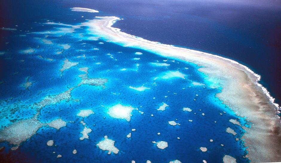 Das Korallensterben am Great Barrier Reef vor der Küste Australiens.