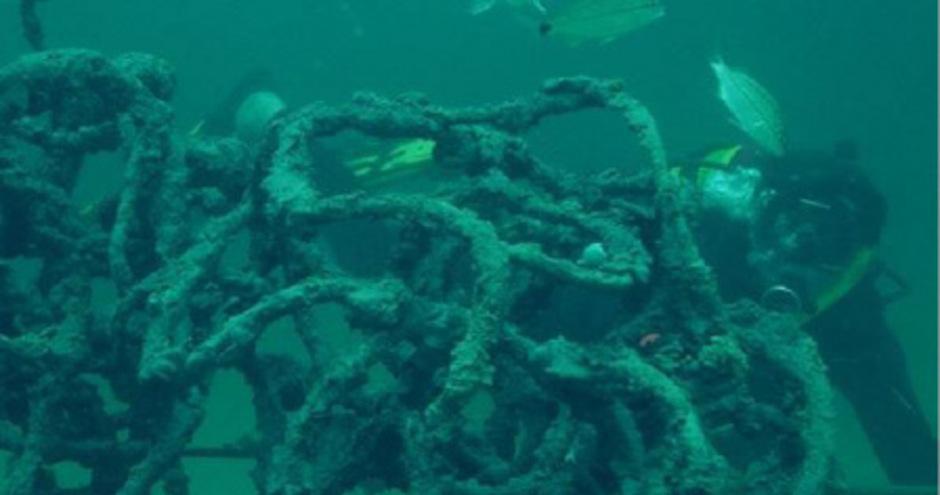 Die jährlich wechselnden Skulpturen sollen Fischen als Lebensraum dienen oder das Wachstum von Korallen und Austern fördern.