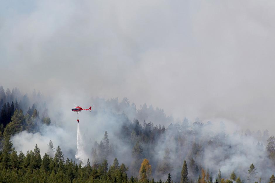 Mehrere Waldbrände in Schweden nicht mehr zu löschen | Tiroler ...