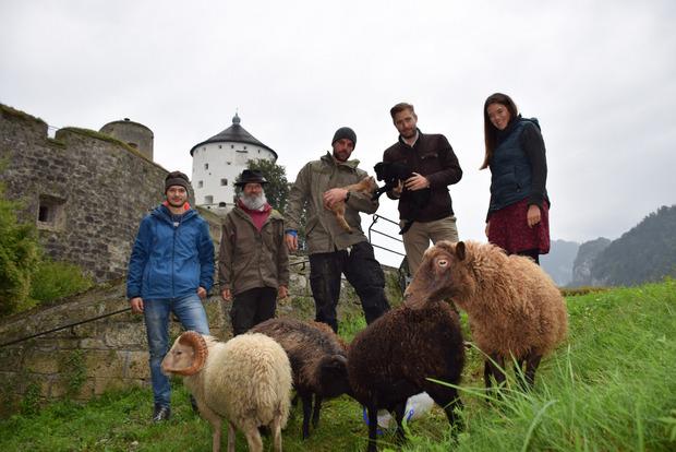 """Von links: Felix Weiß, Markus Raithofer, Thomas Holzer und Lisa Mayer (r.) kümmern sich um die sieben tierischen """"Rasenmäher"""" am Festungsberg. Die Idee dazu hatte """"Festungsherr"""" Emanuel Präauer (2.v.r.)."""