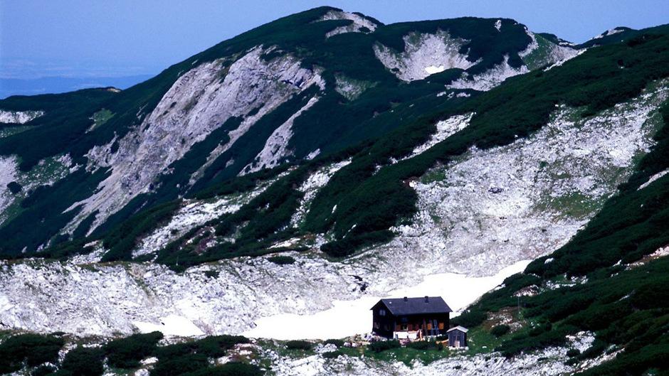 """""""Schorschi"""" wurde zuletzt lebend bei der Rieder Hütte im Höllengebirge in Oberösterreich gesehen."""