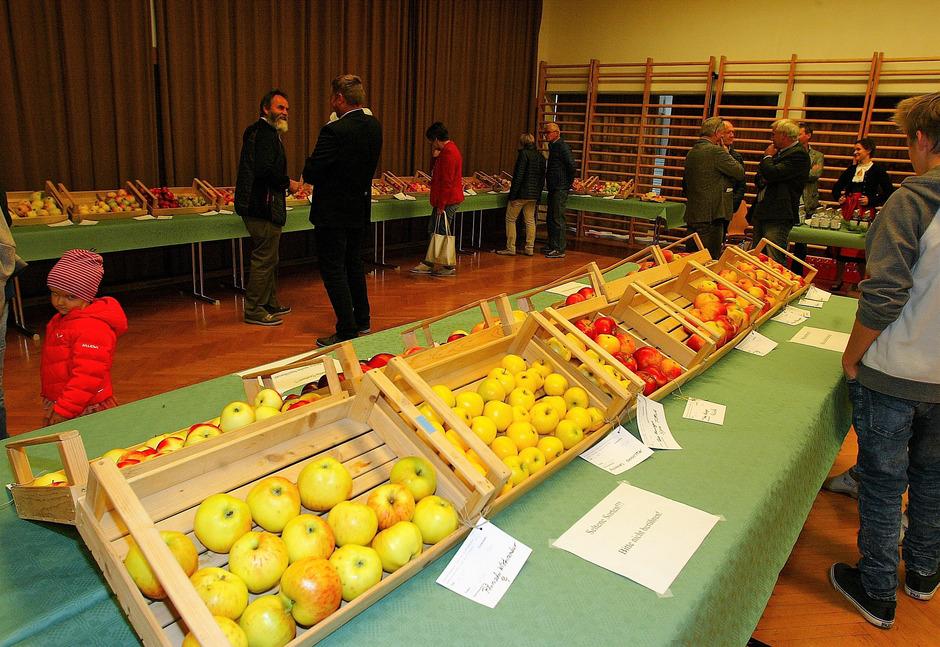 Ausstellung im Saal der NMS Fließ: Obstbauern der Region stellten 60 Apfelsorten vor.