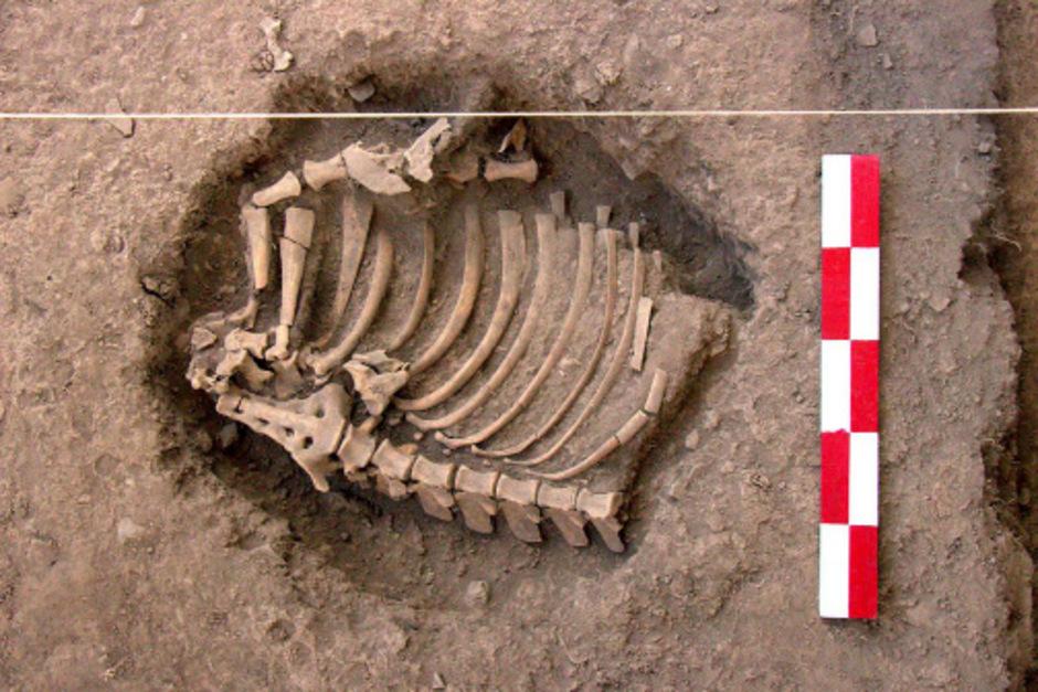 Wichtige Ausgrabungen in Cusco, Peru.