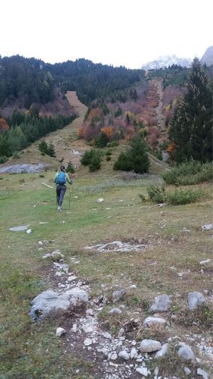 Der Seilbahnsteig ist zwar mitunter steil, aber ideales Trainingsgelände.