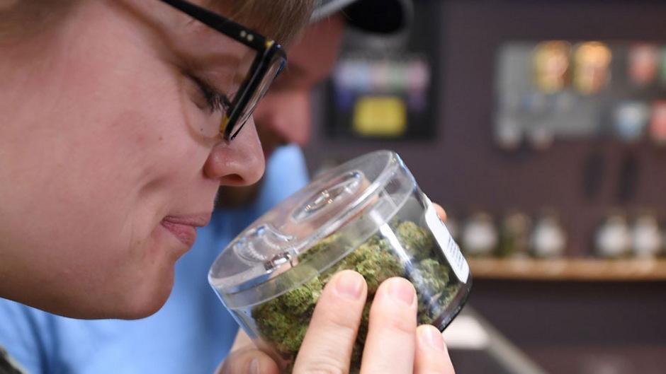 In acht US-Bundesstaaten ist Cannabis bereits legal, jetzt könnten auch Michigan und North Dakota folgen.