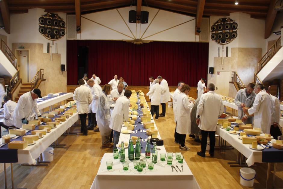 Noch bis Samstag bewerten 39 Juroren bei der Käsiade in der Salvena in Hopfgarten über 450 verschiedene Käse.