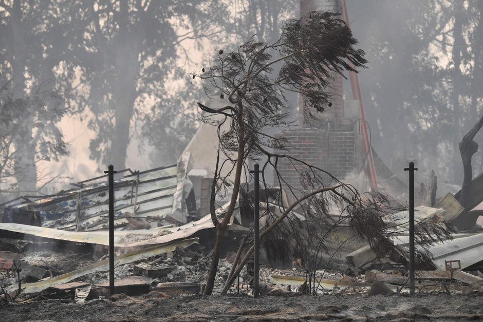 Zerstörte Gebiete nahe von Malibu.
