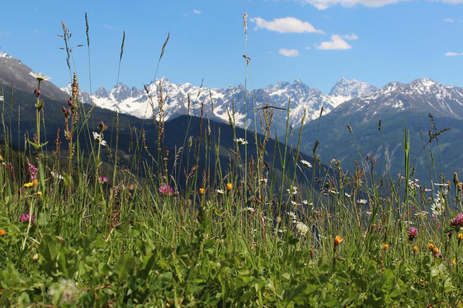 Tirol meldete der EU zusätzliche Natura-2000-Schutzgebiete