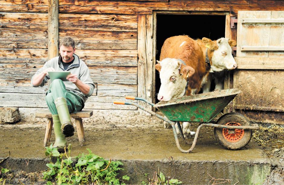 Heugabeln haben ausgedient: Digitale Technik am Bauernhof