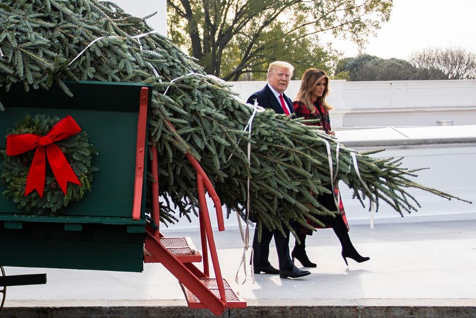 Seit 1966 schreibt die Nationale Christbaumvereinigung in den USA einen Wettbewerb aus. Der Gewinner darf dann den offiziellen Baum in das Weiße Haus liefern.