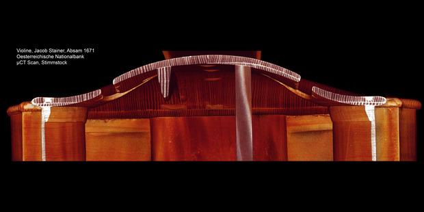 Der Scan des Stimmstocks der Geige zeigt die Wölbung des Korpus.