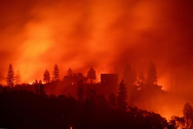 Mindestens 48 Menschen kamen im Feuer ums Leben.