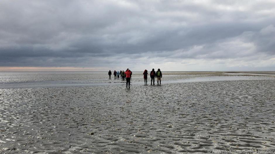 Bei ungemütlichem Wetter stapfen kleine Gruppen in Gummistiefeln durch die winterliche Nordsee.