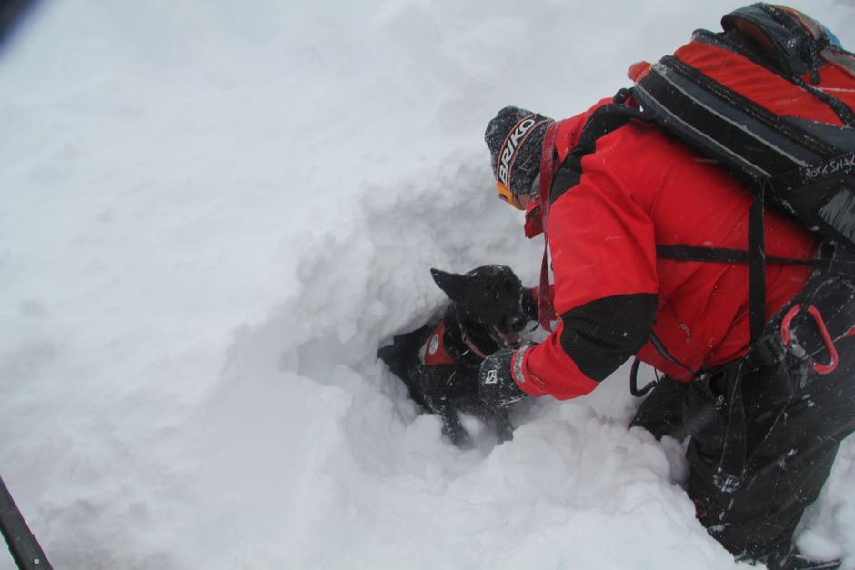 Hundeführer Anton Wörz trainierte mit Cini. Der Vierbeiner aus Imsterberg war auf Zack.