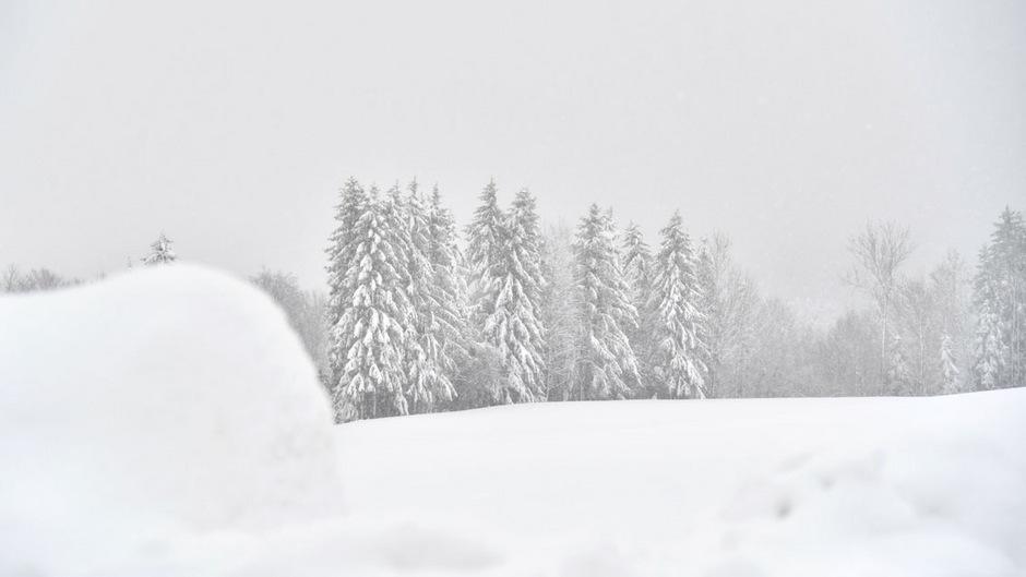 Auch in Salszburg ist die Lawinengefahr auf Grund der großen Schneemengen hoch. Die beiden Jäger waren im Tennengau von einem Schneebrett mitgerissen worden. (Symbolbild)