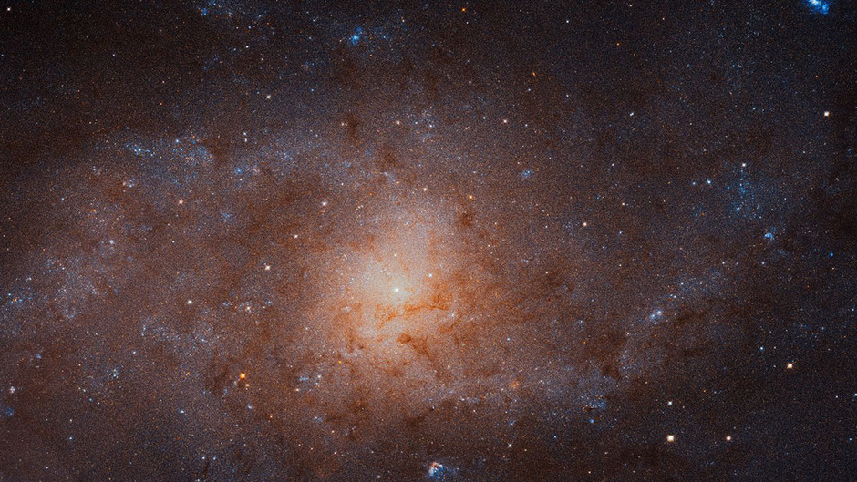 Mit dem Mosaik aus 54 Einzelaufnahmen wollen Astronomen sogenannte Sternentstehungsgebiete in der kleinen Spiralgalaxie untersuchen, wo aus Gas und Staub neue Sonnen produziert werden.