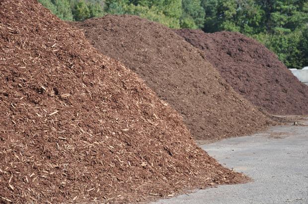 Fruchtbarer Boden aus alten Christbäumen: In Kompostieranlagen, etwa in Schlitters oder in Lienz, entsteht aus den vertrockneten, alten Tannen und Kiefern Humus, aus dem dann später wieder neue Pflanzen wachsen können.