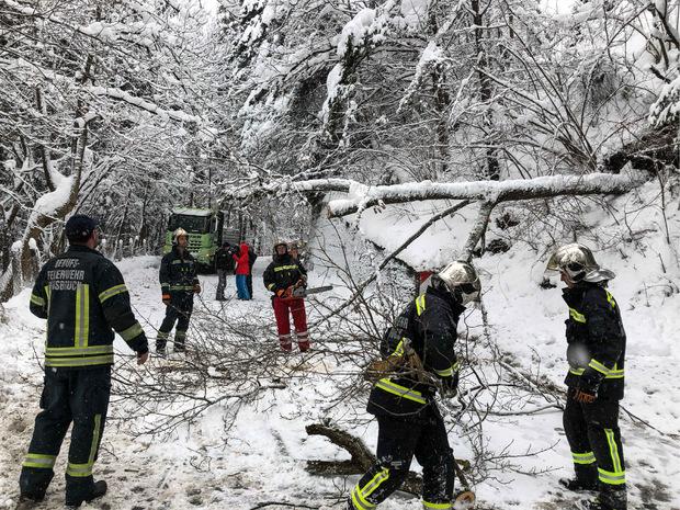 Fahrzeuge mussten geborgen, Dächer abgeschaufelt und Verkehrshindernisse (wie hier umgefallene Bäume) beseitigt werden.