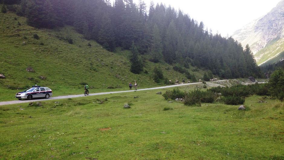 Im Sommer 2014 war eine langjährige Tirol-Urlauberin bei der Neustifter Pinnisalm mit ihrem Hund von einer Kuhherde getötet worden.