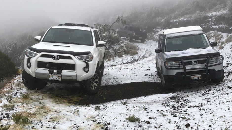 Eine dünne Schneeschicht bedeckt den Boden in der Polipoli Spring State Recreation Area auf der Insel Maui im amerikanischen Gliedstaat Hawaii.