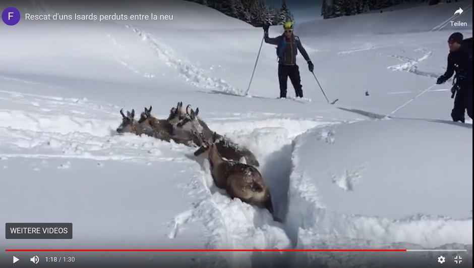 Der Video-Mitschnitt stammt gar nicht aus Tirol.
