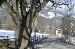 Ein Gehsteig entsteht von der Sennerei Richtung Dorf.