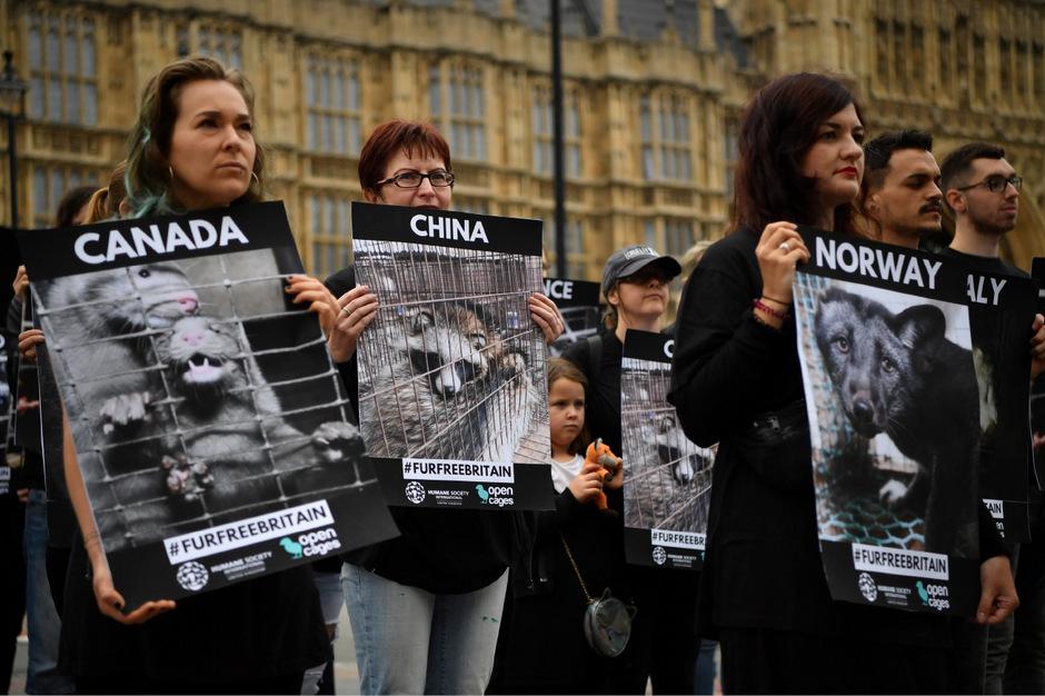Demonstrationen gegen den Einsatz von Pelz.