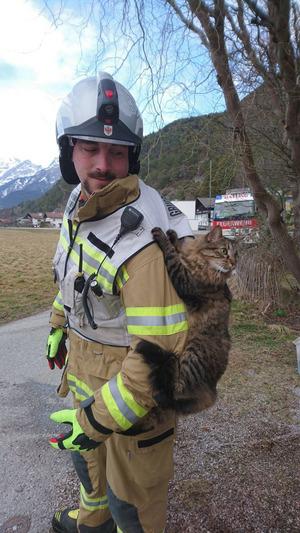 Die Katze wollte nach ihrerer Rettung den Hattinger Gruppenkommandanten nicht mehr los lassen.