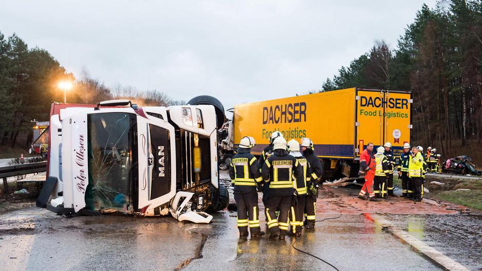 Einer der Lastwagen hatte zwischen 600 und 650 Ferkel geladen. Einige verendeten, ein Teil wurde verletzt.