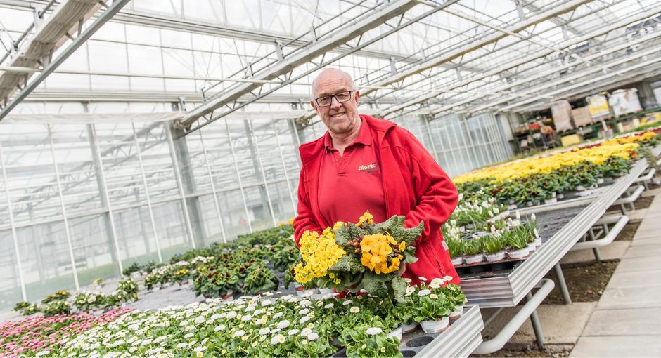 Blumen: Stiefmütterchen und Narzissen kann man laut Reinhard Jäger, Seniorchef der gleichnamigen Thaurer Gärtnerei, bereits jetzt bedenkenlos setzen. Wer sich für Primeln, Ranunkeln oder Tulpen entscheidet, sollte die bei Frost mit einem Fließ abdecken.