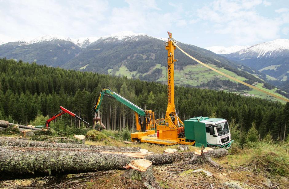 Im Kampf gegen den Borkenkäfer ist eine rasche Aufarbeitung des Schadholzes notwendig.